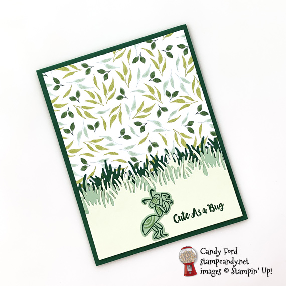 Stampin' Up! Wiggle Worm bundle Cute as a Bug Grasshopper handmade card by Candy Ford of Stamp Candy