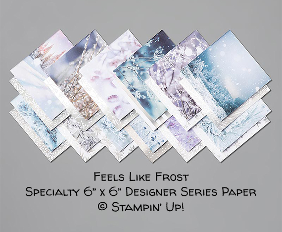 Feels Like Frost Specialty 6x6 Designer Series Paper © Stampin' Up!