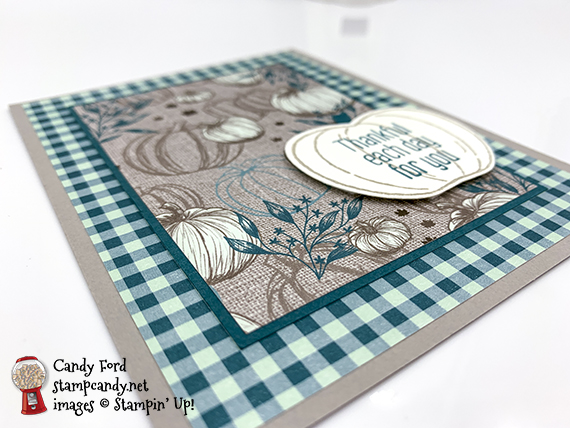 Stampin' Up! Harvest Hellos bundle Apple Builder Punch Come To Gather DSP handmade card by Candy Ford of Stamp Candy