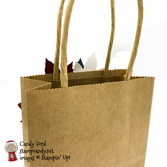 Come to Gather suite decorated Paper Pumpkin bag, Stampin' Up! Candy Ford #stampcandy