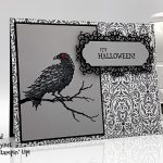 The Raven stamp set, Ornate Frames Dies, and Monster Bash paper from Stampin