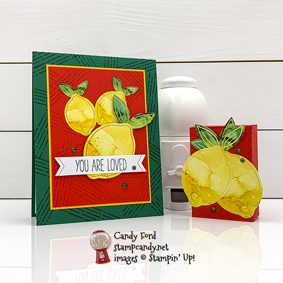 06-2020 APPTBH Box of Sunshine Paper Pumpkin Candy Ford #stampcandy
