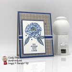 Prized Peony stamp set, Peony Garden paper, sympathy card #stampcandy stampinup handmadecards a