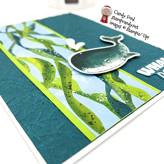 Whale Done stamp set, Whale Builder Punch, Whale of a Time DSP, Seabed EF, Stampin' Up, Candy Ford #stampcandy