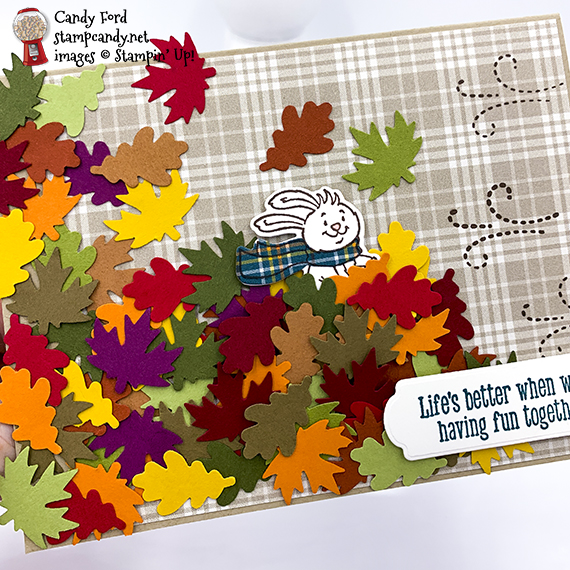 Freezin' Fun bundle, Snow Time Dies, Autumn Punch Pack, Plaid Tidings Designer Series paper #stampcandy #stampinup #handmadecards #irbh