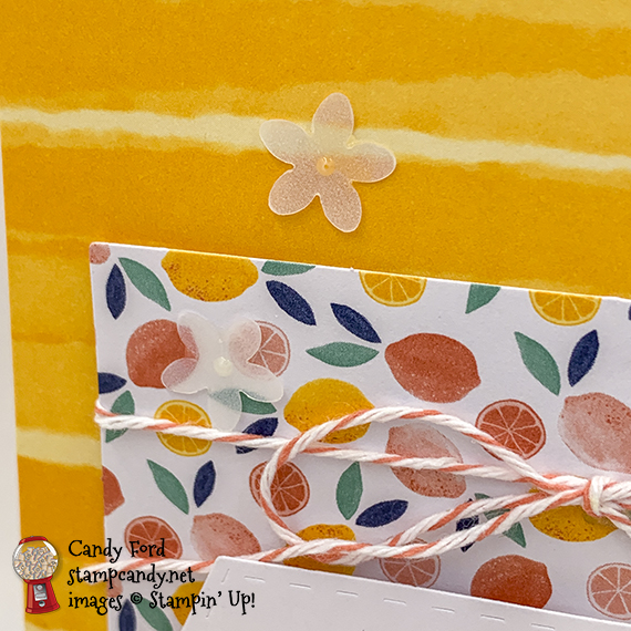 Simply Citrus All Inclusive Card Kit handmade cards by Candy Ford of Stamp Candy