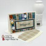 Plaid Tidings Designer Series Paper, Gather Together stamp set #stampcandy