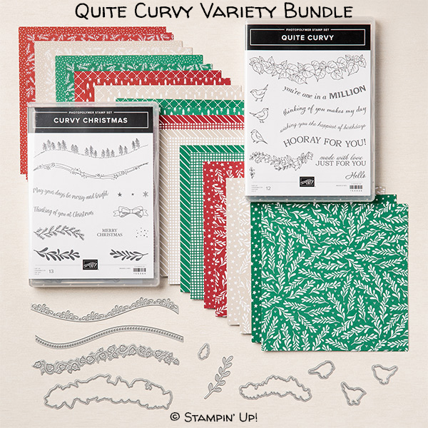 Quite Curvy Variety Bundle, Item 158396