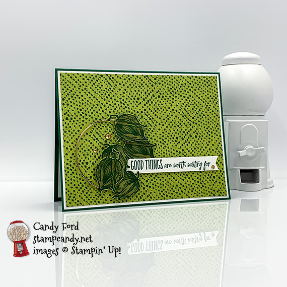 Enjoy the Moment stamp set, Banners Pick a Punch, Forever Greenery Designer Series Paper #stampcandy