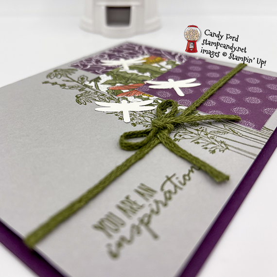 Dragonfly Garden Bundle, Dandy Garden Designer Series Paper, Mossy Meadow Braided Linen Trim, thank you card #stampcandy