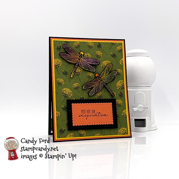 Dandy Garden Dragonfly Garden Joseph's Coat technique card #stampcandy