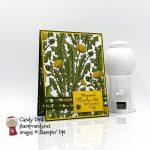 Dragonfly Garden card, Dandy Garden DSP, braided linen trim, Ladybug Trinkets #stampcandy