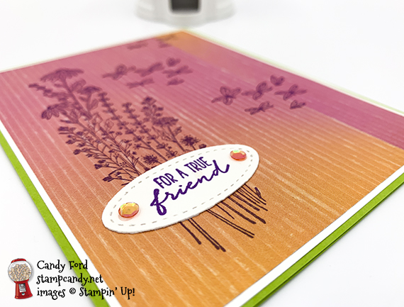Dragonfly Garden card for a true friend #stampcandy