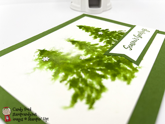 In the Pines watercolor card #stampcandy