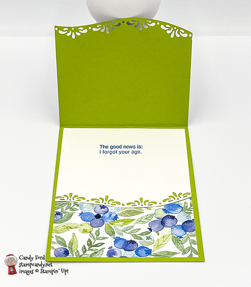 Approaching Perfection Berry Delightful birthday card #stampcandy #CHBH