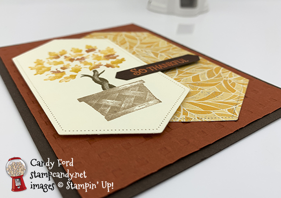 Beauty and Joy stamp set from Stampin' Up! Card by Candy Ford #stampcandy #stampinup