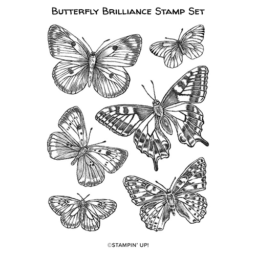 Butterfly Brilliance stamp set #stampinup #stampcandy