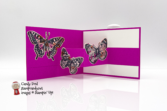 Butterfly Brilliance W-Fold Card #stampcandy