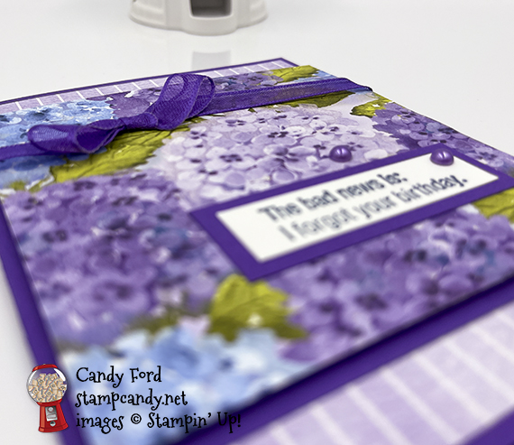 Hydrangea Hill double card #stampcandy